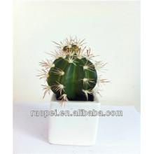 Plante artificielle en pot de cactus pour la décoration d'intérieur