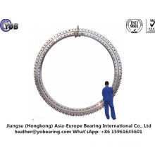 China Manufacturer of Slewing Bearing 011.75.3150