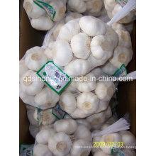 Новый урожай чистого белого чеснока 500г