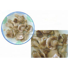 Konservierter Abalone-Pilz