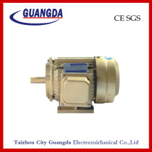 CE SGS 2.2kw Triple-Phase Air Compressor Motor