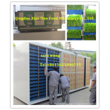 Animal Feed Growing Equipment/Wheat Seeding Machine/+8615621096735