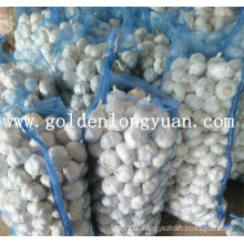 Fresh Garlic Professional Manufacturer From China