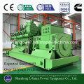 100kw Silent Genset o planta de energía eléctrica para biogás generador de metano