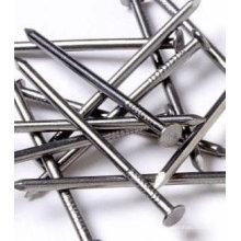 Verzinkte Stahlbetonstahlnägel / Edelstahlbetonnagel