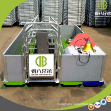 Hot Sale Farrowing Crate Customized Pig Equipment for Pig Cages for Sale