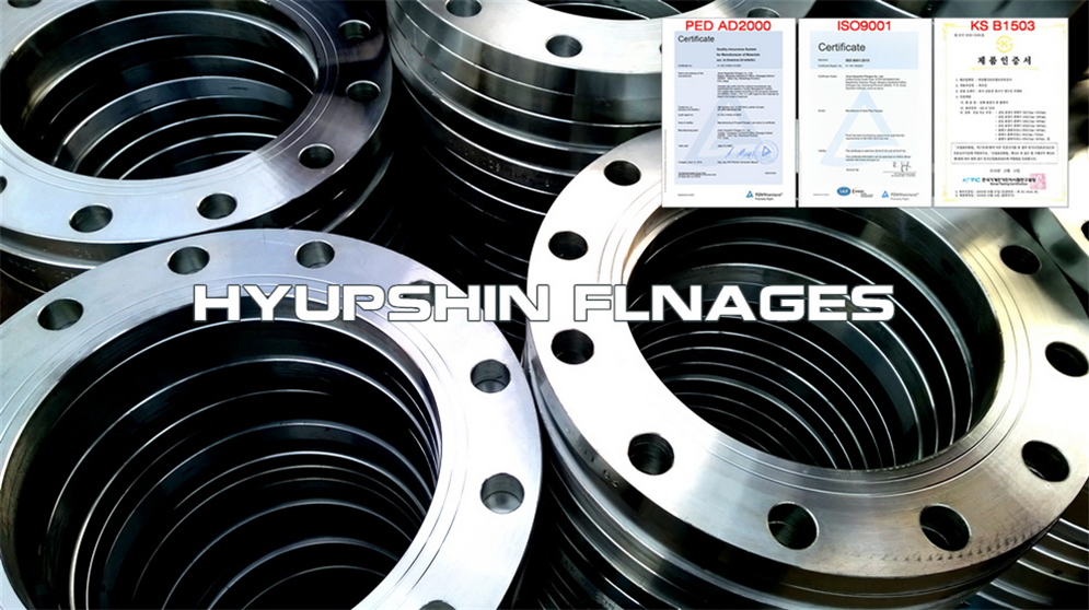 Hyupshin Flanges Flat Plate Flanges Plff Carbon Steel Forged