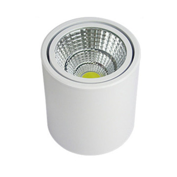 White Technology 3W LED Downlight