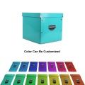APEX caixa de papelão dobrável de armazenamento para sapatos de roupa
