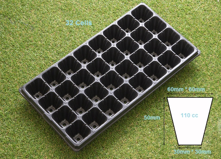 seedling tray 32