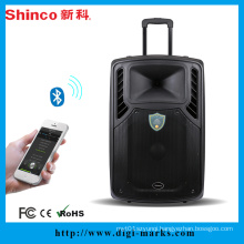 High Quality Multimedia Wireless Bluetooth Big Power DJ Speaker