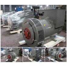 Single-Lager AC Brushless Electric Generator 6kw ~ 160kw