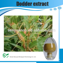 Pure natural Dodder Extract with free sample