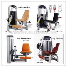 ventes directes d'usine Assis Leg Extension équipement de conditionnement physique / chaude super gym équipement pour la promotion / Chine fait de l'équipement de sport