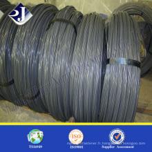 Good Price Low Carton Steel Wire Rod