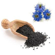 Экстракт Nigella Sativa / Экстракт семян черного тмина 5%