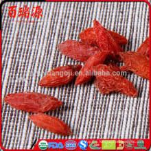 Low pasiticide dried wolfberry wolfberry goji gnc de goji