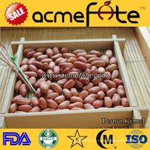 Organische rote Haut Erdnusskerne 50/60