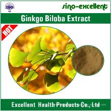 100% Natural Ginkgo Biloba Leaf Extract 24/6