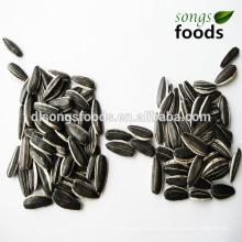 Top Sunflower Seed Market Price, Inner Mongolia Origin