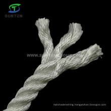 3 Strand High Tenacity Polyester/Nylon/PA/Plastic/Sythetic/Marine/Packing/Lifting/Twist/Twisted Mooring Rope