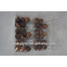 2016 best-seller Healthcare Fermented Solo Black Garlic 500g/bag