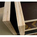 Hot Sale 18mm Film Faced Plywood
