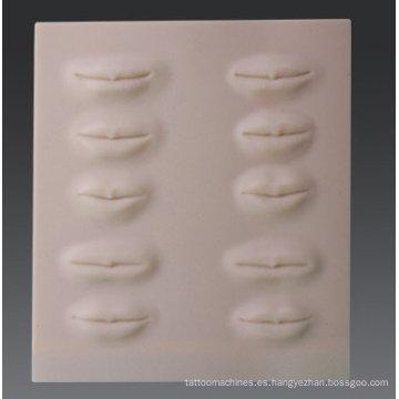 3D-Stereo tatuaje práctica piel-labios Práctica Dermis