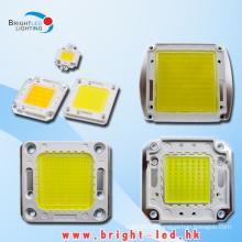 LED de alta qualidade de alta qualidade (BL-LED20W-5003)
