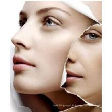 (L-Carnosine) --Prevent vieillissement de la peau et blanchiment de la peau L-Carnosine