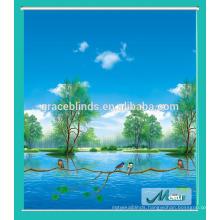 High Standard Factory Price Custom Blackout sunscreen roller blinds/cutains