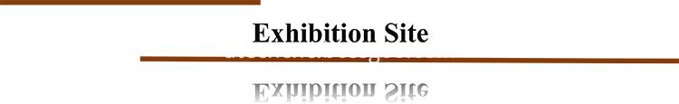 C Title Exhibition 750
