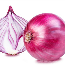 2021 high quality New Harvest Natural Fresh Onion Export Chinese Fresh Onion