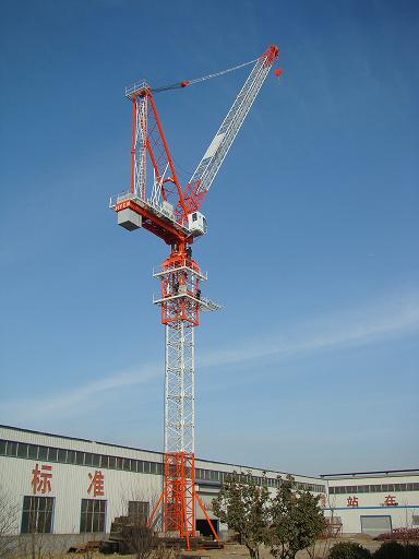 8 Ton Mini Luffing Jib Tower Crane