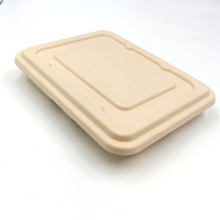 Good Quality Takeaway Disposable Sugarcane Bagasse Food Container With Lid