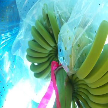 Blue Plastic Banana Protect Cover Cover