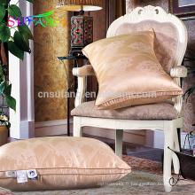 Linge de maison / hôtel de luxe blanc oie / canard vers le bas oreiller insert