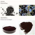 Food Grade black goji berry powder organic