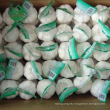 Top grade new Chinese fresh pure white garlic