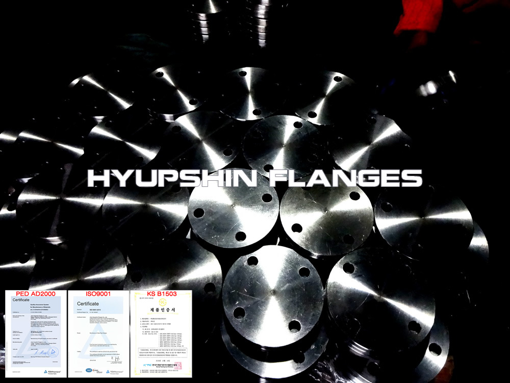 carbon steel_flanges_blind_steel