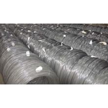 Spring Steel Wire /Belt Wire