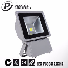70W Garden Use LED Floodlight with Meanwell Driver