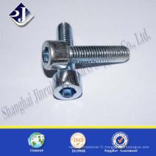 Zingué TS16949 ISO9001 DIN912 vis hexagonale