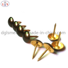 Chair Nail/Furniture Nail/Nail with High Quality