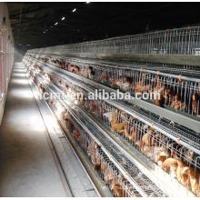 poulailler maison poulet hangar design pour les couches