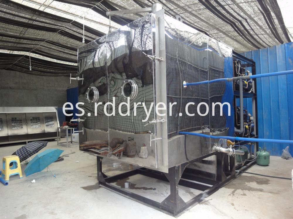low temperature drying spinach equipment- microwave vacuum drye