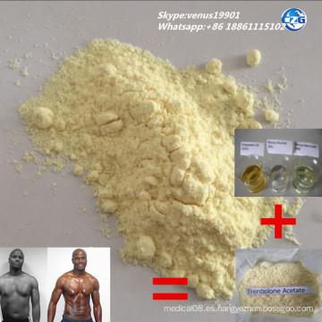 Tren 99% Pureza USP & GMP Grado Esteroide en polvo Acetato de trenbolona