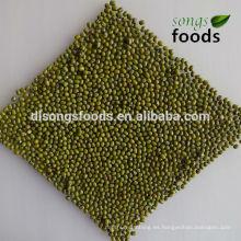Bigote de mung verde myanmar a granel seco