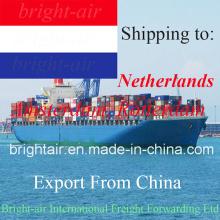 Обслуживание снабжения Товароотправителя Перевозкы груза океана от Китая в Амстердам, Роттердам, Нидерланды