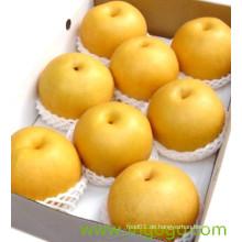 Chinesische neue Ernte Frische gute Qualität Birne